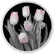 Round Beach Towel featuring the photograph Holland Tulips In Black And White With Pink by Jeannie Rhode