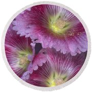 Hollyhocks Round Beach Towel