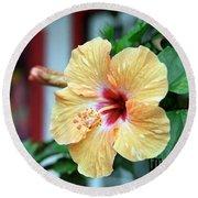 Holualoa Hibiscus Round Beach Towel