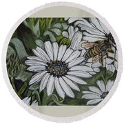 Honeybee Taking The Time To Stop And Enjoy The Daisies Round Beach Towel