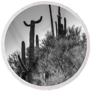 Horn Saguaro Cactus Round Beach Towel