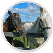 Horse Beauties Round Beach Towel