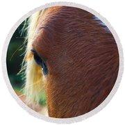 Horse Close Up Round Beach Towel