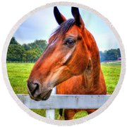 Round Beach Towel featuring the photograph Horse Closeup by Jonny D