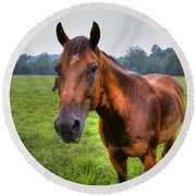 Horse In A Field Round Beach Towel