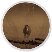Horse In The Mist Round Beach Towel