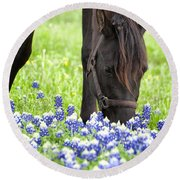 Horse With Bluebonnets Round Beach Towel