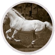Horsepower Round Beach Towel by Wes and Dotty Weber
