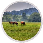 Round Beach Towel featuring the photograph Horses In A Field 2 by Jonny D