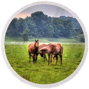 Round Beach Towel featuring the photograph Horses Socialize by Jonny D