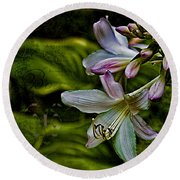 Hosta Lilies With Texture Round Beach Towel