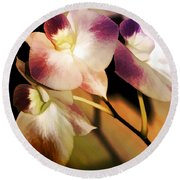 Hot Orchid Nights Round Beach Towel by Holly Kempe