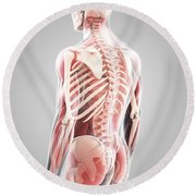 Human Muscles Round Beach Towel