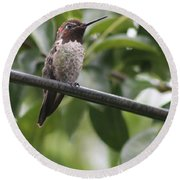 Hummer On A Wire Round Beach Towel