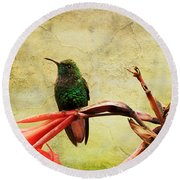 Hummingbird 1 Round Beach Towel