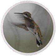 Round Beach Towel featuring the photograph Hummingbird 6 by Leticia Latocki