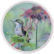 Hummingbird And Coneflowers Round Beach Towel