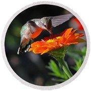 Hummingbird And Zinnia Round Beach Towel