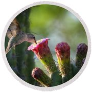Hummingbird Breakfast Southwest Style  Round Beach Towel by Saija  Lehtonen