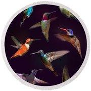 Hummingbird Collage2 Round Beach Towel