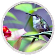 Round Beach Towel featuring the photograph Hummingbird by Deena Stoddard