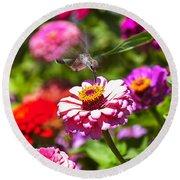 Hummingbird Flight Round Beach Towel by Garry Gay