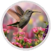 Hummingbird In Colorful Garden Round Beach Towel by William Lee