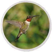 Hummingbird In Flight Round Beach Towel by Sandy Keeton