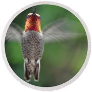 Round Beach Towel featuring the photograph Hummingbird In Flight Male Anna by Jay Milo