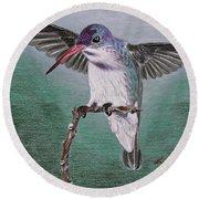 Hummingbird Round Beach Towel by Kume Bryant
