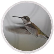 Round Beach Towel featuring the photograph Hummingbird  by Leticia Latocki
