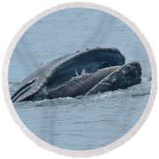 Round Beach Towel featuring the photograph Humpback Whale  Lunge Feeding Monterey Bay 2013 by California Views Mr Pat Hathaway Archives