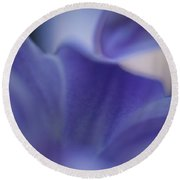 Hyacinth Round Beach Towel by Bill Wakeley