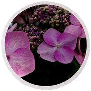Hydrangea Flowers  Round Beach Towel by James C Thomas