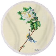 Hydrangea With Yellow Breasted  Vireo After Audubon Round Beach Towel by Veronica Rickard