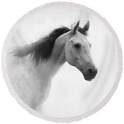 I Dream Of Horses Round Beach Towel