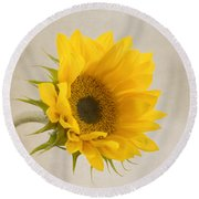 I See Sunshine Round Beach Towel by Kim Hojnacki