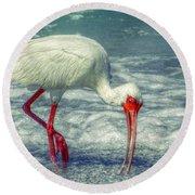 Ibis Feeding Round Beach Towel by Valerie Reeves