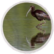 Ibis Reflection Round Beach Towel