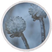 Ice-covered Winter Flowers With Blue Background Round Beach Towel