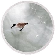 Ice Goose Round Beach Towel