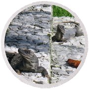 Iguana Bask In The Sun With You Round Beach Towel by Patti Whitten