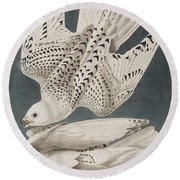 Illustration From Birds Of America Round Beach Towel by John James Audubon