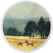 Impression Evergreen Colorado Round Beach Towel