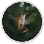 In Flight Round Beach Towel by Photographic Arts And Design Studio
