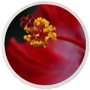 In Red Round Beach Towel