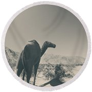 In The Hot Desert Sun Round Beach Towel