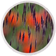In The Meadow Round Beach Towel by Heiko Koehrer-Wagner