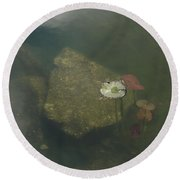 Round Beach Towel featuring the photograph In The Pond by Carol Lynn Coronios