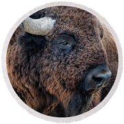 Bison The Mighty Beast Bison Das Machtige Tier North American Wildlife By Olena Art Round Beach Towel